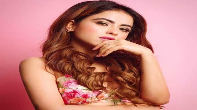 Simi Chahal Biography Wiki, Age, Education, Family, Height, Career, Movie List