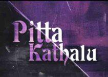 Watch Pitta Kathalu Talugu Netflix Movie Star Cast Review