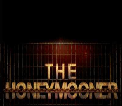 The Honeymooners Web Series Primeflix Cast, All Episodes Online, Watch Online
